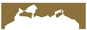 Elisa Scala Logo